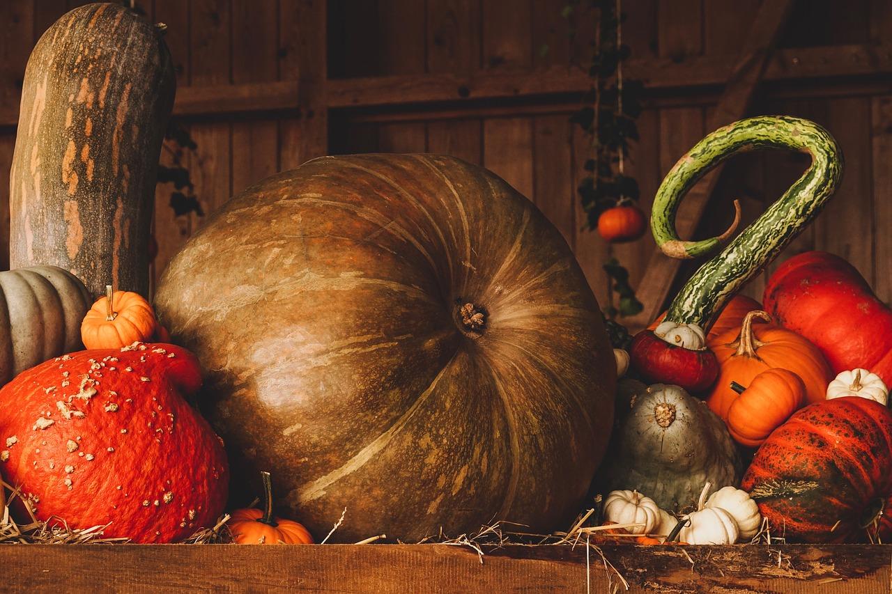 Jak spędzić z dzieckiem rozwijająco Halloween ?